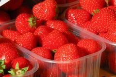 Targowy Strawberies Obrazy Stock