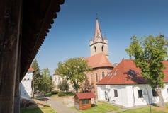 Targu Mures被改革的教会  库存照片