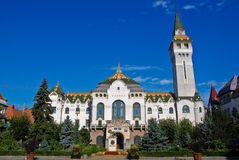 Targu Mures - Administrative Palace. The Administrative Palace in downtown Targu Mures royalty free stock photo