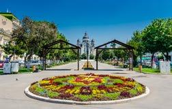 Targu Mures centrum Royaltyfria Foton
