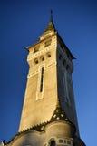 Targu Mures - de Oude Stad Hall Tower Stock Foto's