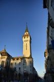 Targu Mures la Transylvanie, Roumanie Photographie stock libre de droits