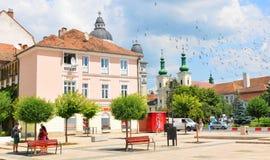 Targu Mures, Roemenië Stock Foto