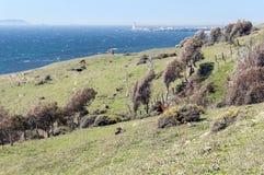 Tarifa coastline Stock Images