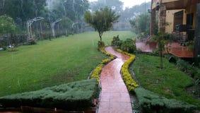 Tarija Bolivia garden. Rain at a bolivian tarijean house garden Stock Photos