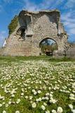 Tarimas y ruinas Foto de archivo libre de regalías