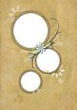 Tarjeta 01 de la vendimia Fotografía de archivo libre de regalías