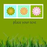 Tarjeta Imagen de archivo libre de regalías