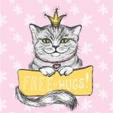Tarjeta, abrazos dibujados mano linda del gato y de la inscripción libremente, CCB floral Fotos de archivo libres de regalías