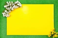 Tarjeta amarilla Foto de archivo