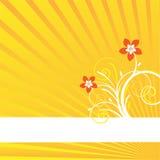 Tarjeta amarilla del fondo Foto de archivo libre de regalías