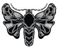 Tarjeta blanco y negro decorativa del ejemplo de la mariposa Fotografía de archivo