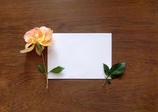 Tarjeta color de rosa y en blanco del inglés para el texto en la madera Foto de archivo libre de regalías