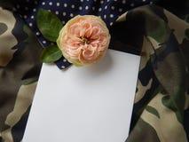 Tarjeta color de rosa y en blanco del inglés para el texto en tela Fotos de archivo