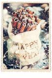 Tarjeta con canela en bolso Feliz Año Nuevo bordada Imagen de archivo libre de regalías