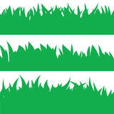 Tarjeta con la hierba verde Fotos de archivo libres de regalías