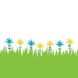Tarjeta con la hierba verde y las flores Imagen de archivo libre de regalías