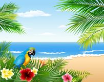 Tarjeta con la playa tropical, las plantas tropicales y el loro Fotos de archivo
