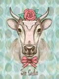 Tarjeta con la vaca linda dibujada mano de la moda Fotos de archivo