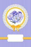 Tarjeta con las flores del azafrán Fotografía de archivo
