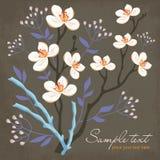 Tarjeta con las flores y el sauce de la primavera Imagenes de archivo