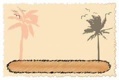 Tarjeta con las palmas y los pájaros Imagenes de archivo