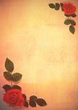 Tarjeta con las rosas y la textura Fotos de archivo