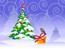 tarjeta con un árbol del bullfinch y de abeto Fotografía de archivo libre de regalías