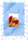 Tarjeta congratulatoria Imagen de archivo libre de regalías