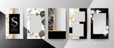 Tarjeta creativa, invitación, marco para el texto o foto Plantilla de la cita Concepto del arte para las historias ilustración del vector
