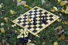 Tarjeta de ajedrez en la hierba imagen de archivo libre de regalías