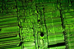 Tarjeta de circuitos del contraluz Fotos de archivo