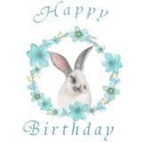 Tarjeta de cumpleaños con el conejito mullido Fotos de archivo libres de regalías