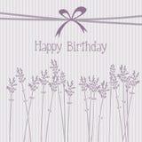 Tarjeta de cumpleaños romántica de la lavanda, invitación, fondo Foto de archivo libre de regalías