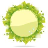 Tarjeta de Eco con las hojas verdes ilustración del vector