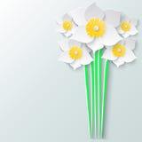 Tarjeta de felicitación abstracta con los narcisos del blanco del ramo 3d Fondo de papel floral de la primavera Foto de archivo libre de regalías