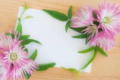 Tarjeta de felicitación blanca en blanco con cherysanthemum rosado imagen de archivo