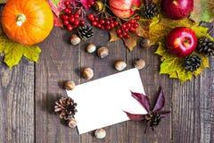 Tarjeta de felicitación blanca en blanco de la acción de gracias con las frutas, las verduras y las bayas del otoño Imagen de archivo libre de regalías