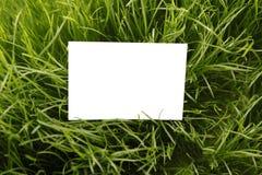 Tarjeta de felicitación blanca en la hierba Fotos de archivo