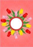 Tarjeta de felicitación con el ramo de tulipanes Imágenes de archivo libres de regalías
