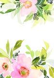 Tarjeta de felicitación con las flores Fotografía de archivo libre de regalías