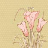 Tarjeta de felicitación con las flores abstractas del lirio de cala Imagen de archivo