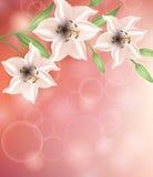 Tarjeta de felicitación con las flores El día de madre de la tarjeta, el día de tarjeta del día de San Valentín stock de ilustración