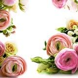Tarjeta de felicitación con la flor Fotografía de archivo libre de regalías