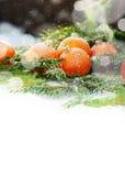 Tarjeta de felicitación con las mandarinas, aisladas en blanco Fotos de archivo libres de regalías
