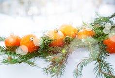 Tarjeta de felicitación con las mandarinas, el boke y los copos de nieve Imagen de archivo libre de regalías