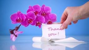 Tarjeta de felicitación con las orquídeas metrajes