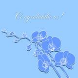 Tarjeta de felicitación con las orquídeas Imagen de archivo