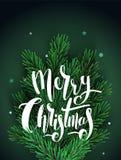 Tarjeta de felicitación con las ramas de árbol de navidad libre illustration