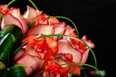 Tarjeta de felicitación con las rosas Fotos de archivo